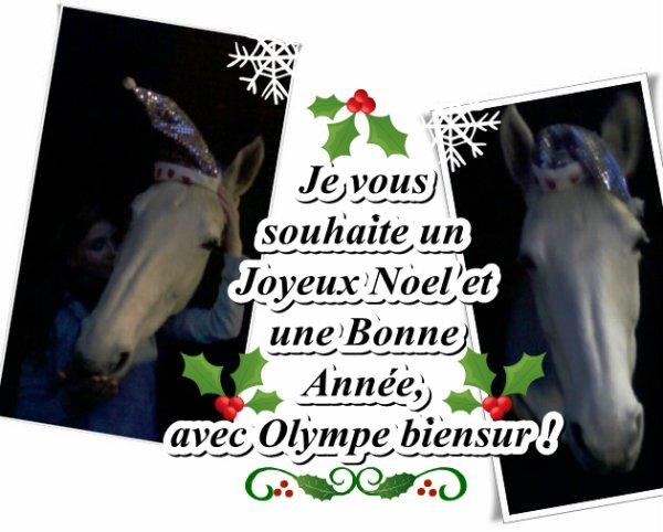 Joyeux Noel et Bonne année! de Olympe et Moi.