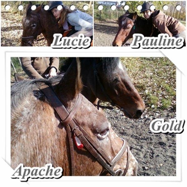 Apache, Il me manque !