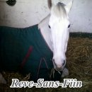 Photo de Reve-Sans-Fiin