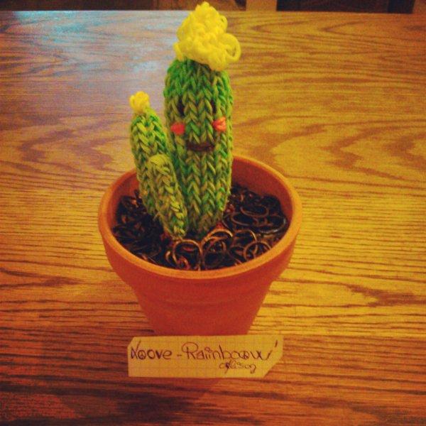 cactus rainbow loom