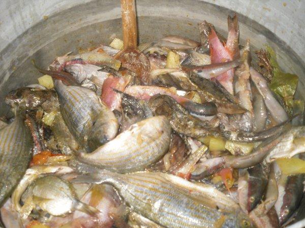 pêcher-manger
