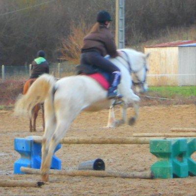 Tout le bonheur du monde est sur le dos d'un cheval.