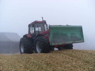 Ensilage maïs 2009