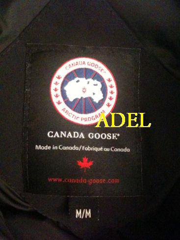 canada goose homme fausse