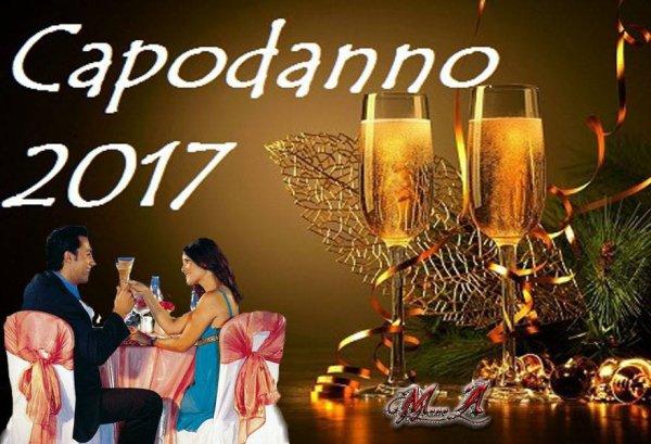 ***  une Bonne Année 2017... ***