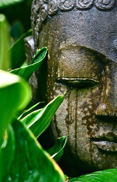 sérenité  zen