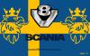 ScaniaV8Team