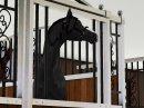 Photo de Histoire-Horse-Sims3