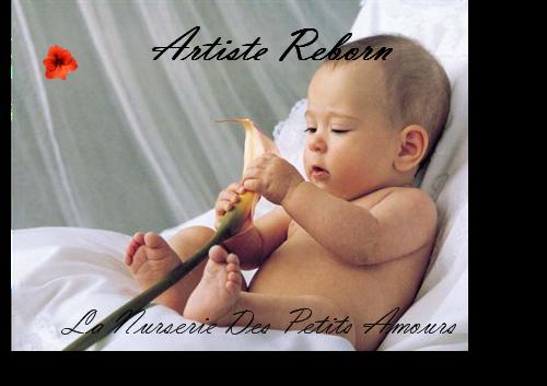 la nurserie des petits amours , Creation de bébé reborn Professionnel