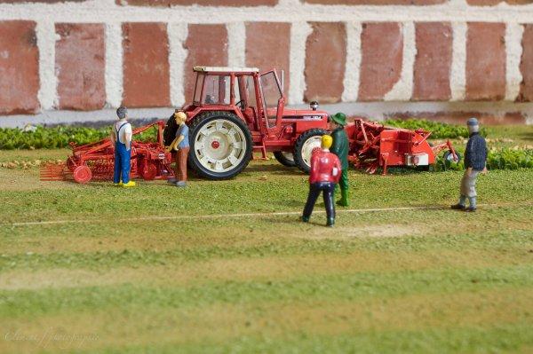 exposition miniature agricole de maizieres (62) dio de antoine