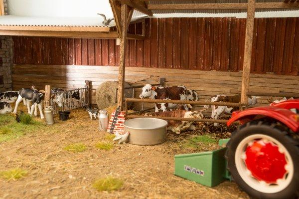 ce matin a la ferme ( concours univer mini )