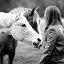 Photo de Astuces-Horse