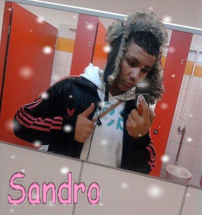 ▍▍▶ Sandro one skyrock ◀ ▍▍