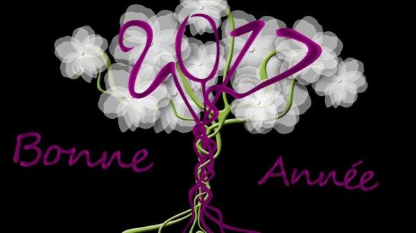 Bonne et heureuse année 2017 !!!