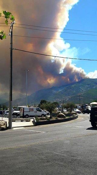 Violent feu de forêt à Biguglia, en Haute-Corse.