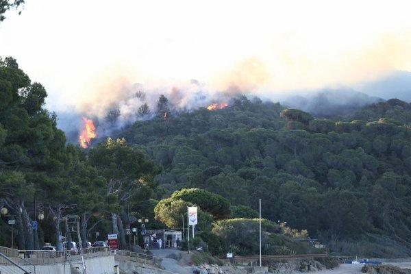 Bilan des feux de forêts dans le Var.