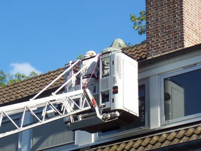 nid de gu pes sous une toiture v hicules des sapeurs pompiers du sdis10. Black Bedroom Furniture Sets. Home Design Ideas