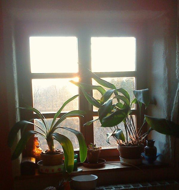 Vu de ma fen tre le 11 fevrier au coucher du soleil for Vu de ma fenetre