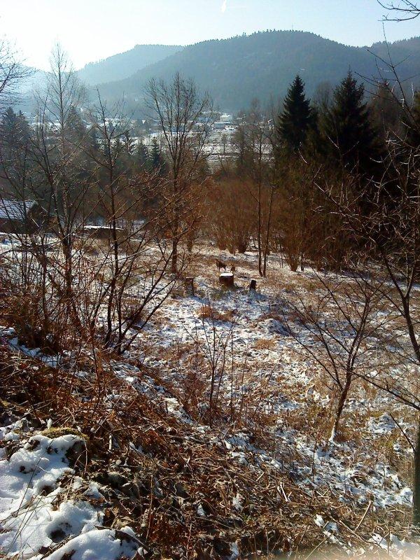 Février 2012 de Glace chez Papy à Liezey