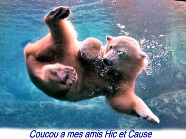 Coucou a mes amis^^