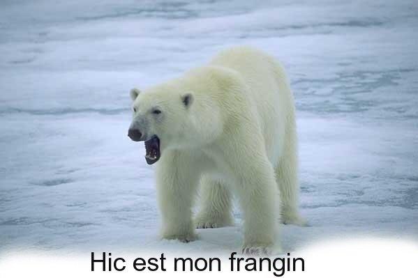 """Le frère de Hic^^ """"Ben"""""""