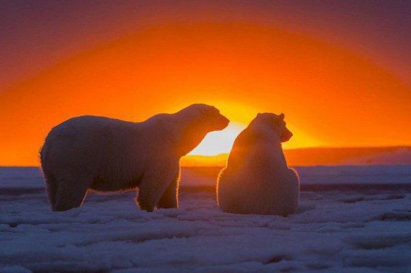 Merveilleux ce soleil couchant hein^^