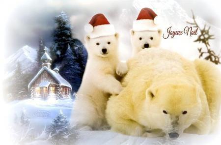 Oursons de Noël^^