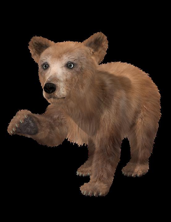 Moi, je suis un ourson 8-p