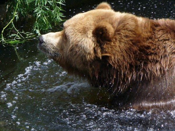 Eh ba moi, je me baigne tranquille peinard et sans être accoudé au comptoir^^