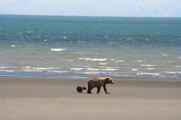 Avec son petit sur la plage^^