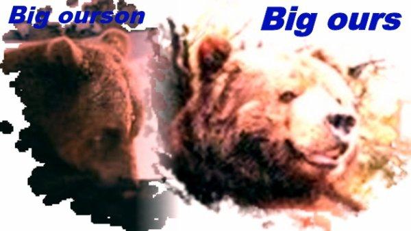 Monsieur Big et son petit^^