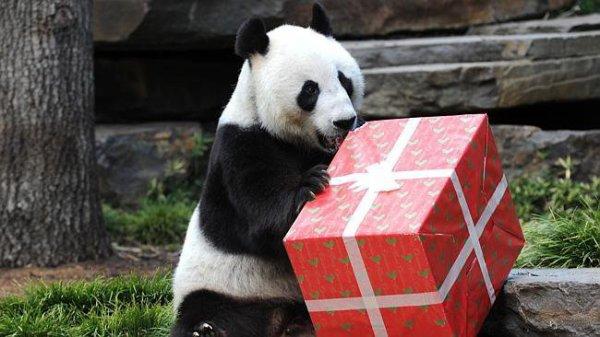 Hum 8-p On vient de m'offrir un cadeau^^