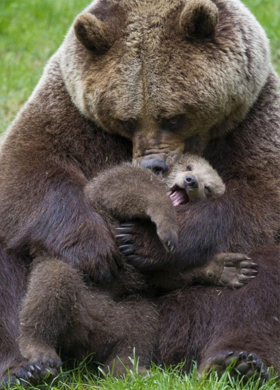 Maman fait des câlins à son petit!^^