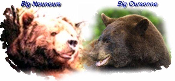 Le Big Ours et sa compagne, te souhaitent un joyeux Noël!^^