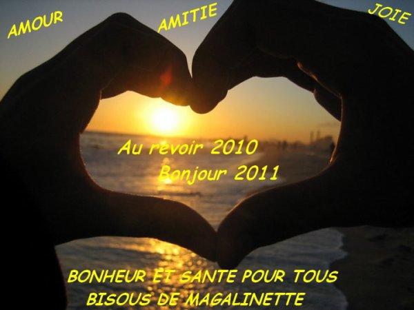 Au revoir 2010 Bonjour 2011