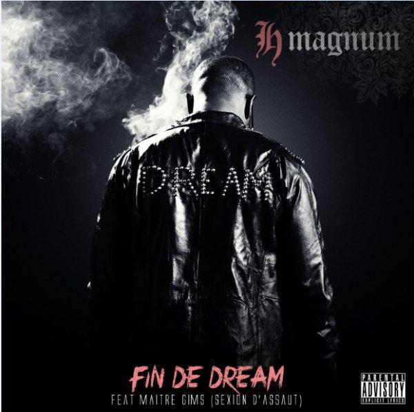 Fin de Dream l'Album