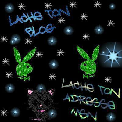 LACHE TON ADRESSE MSN ET TON BLOG...............