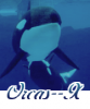 Orcas--x
