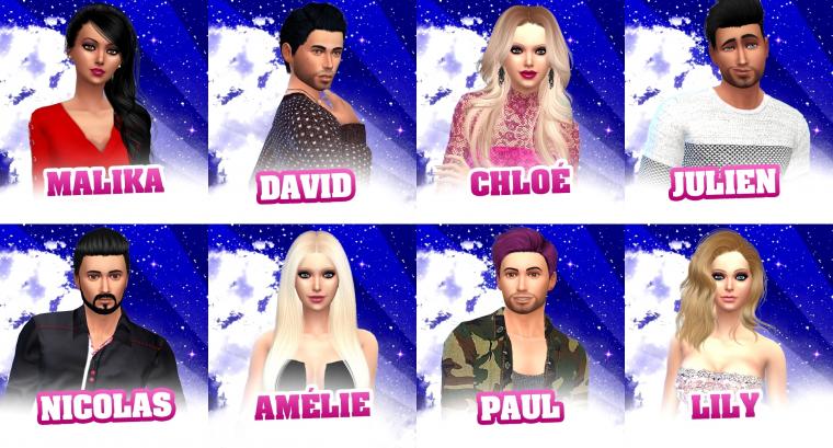 Les candidats (Saison 4)