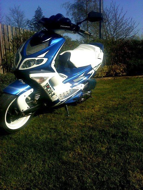 speed au printemps :-)