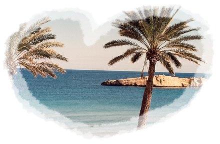 Pour les victimes qui se sont battues pour la liberté de la Tunisie, arrêtons nous 5 minutes...