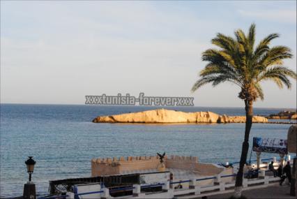 Le tourisme peut-il reprendre normalement en Tunisie?