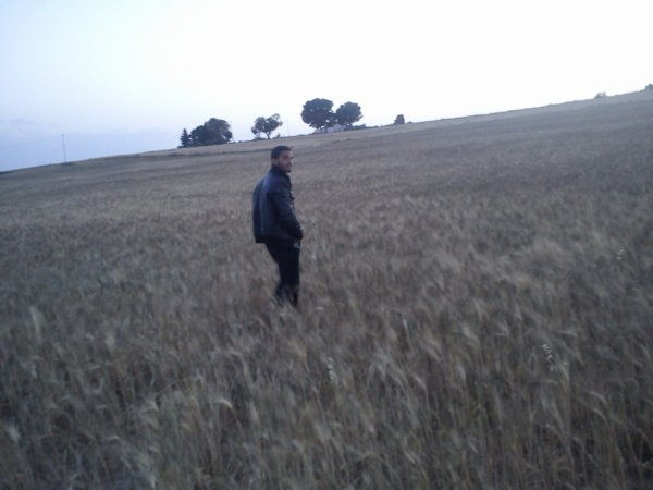 dans le champ