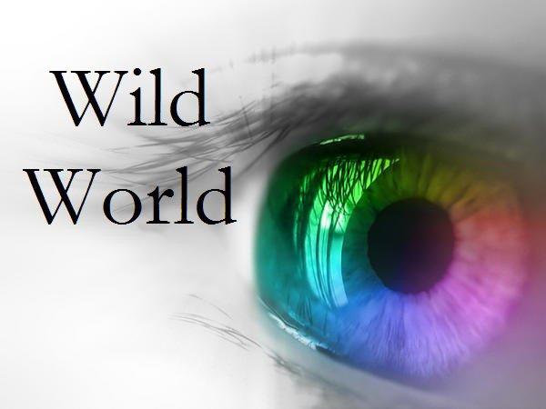 W.W. Le Wild World et ses Royaumes