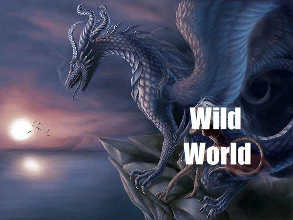 W.W. 17