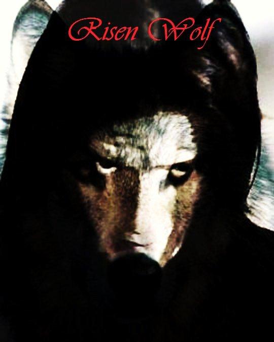 Risen Wolf