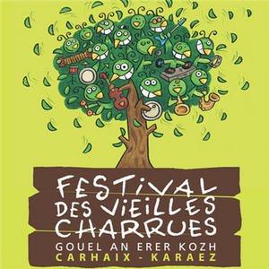 festival des Vieilles Charrues 18 juillet 2010