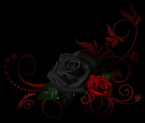 Ne soit pas sans coeur.....Apprends juste à utliser celui-ci lorsqu'une personne le mérite......