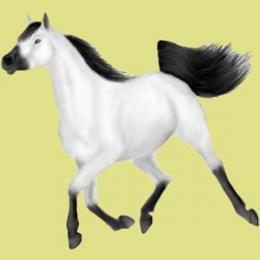 Cheval blanc noir galopant mes chev o - Cheval a imprimer noir et blanc ...