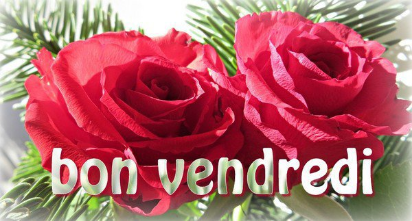 Je vous souhaite une agréable journée en ce vendredi dans la joie et la bonne humeur